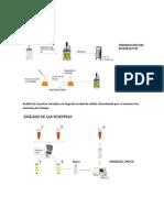 Biorreactor Reporte