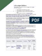 nfermedades de origen hídrico.docx