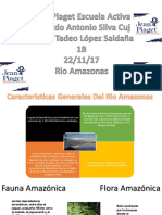Presentacion Rio Amazonaz Geografia