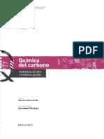QUÍMICA DEL CAERBONO.pdf