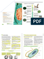 Tema-6 Organización y envolturas celulares ANAYA.docx