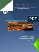 Infografia Derecho Procesal Constitucional