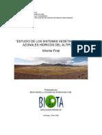 Estudio Humedales Altiplano Biota- Sag