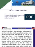 Packer de Produccion2
