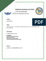 Universidad Nacional de Piur1[1]