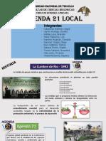 Agenda 21 Local TERMINADO