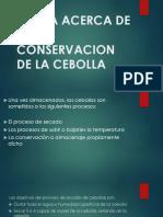 Teoria Acerca de La Conservacion de La Cebolla