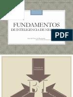 Fundamentos bi.pdf