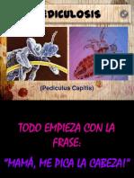01 Presentacionpediculosis 120717215424 Phpapp02