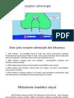 adrenergik.pptx