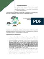 Contaminacion y Delitos Ambientales Daniel