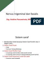 Saraf Trigeminal Dan Fasialis