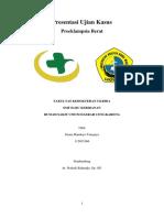 FINAL CASE- PEB.docx