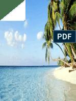 sunny beach.pdf