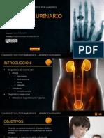 Diagnóstico en Aparato Urinario - 2016