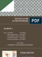 Dygestive System (Final)