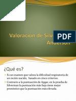 valoracindesilvermanyanderson-141204165726-conversion-gate02.pdf