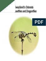 dragonflies.pdf