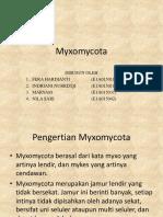 Myxomycota.pptx