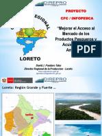 El Proyecto en Iquitos, Por David Panduro