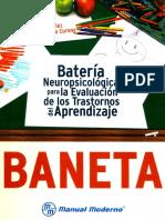 BANETA. Manual [Bueno].pdf