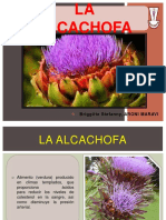 ALCACHOFA 1.pdf
