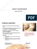 Breast Anatomy With Clinical Correlation