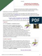 Geophysics Foundations Survey Method Summaries
