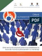Ghid de buna practica privind accesibilitatea la locul de munca a persoanelor cu handicap.pdf