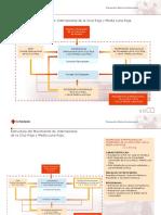 Estructura Del Movimiento Internacional de Cruz Roja-InfoAdicional_organigrama