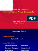 b Mps Summer Take All Patch