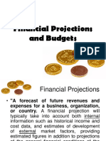 Module 4 Financial Projections and Budgets