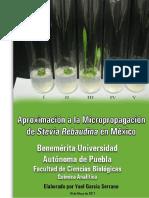 Aproximación a La Micropropagación de Stevia Rebaudiana en México