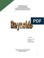 Numero de Reynolds U2017