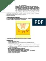 Ficha Basquet 15
