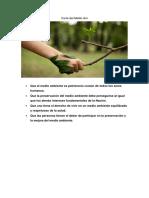 Carta del Medio Ambiente.docx
