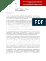 TBGIR.pdf