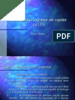 Caracteristicile Cognitive ale Copiilor cu CES.pptx