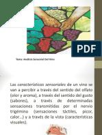 Diapo de Analisis Sensorial Del Vino