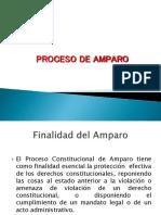 Proceso de Amparo Practicas
