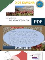 04 kiwicha