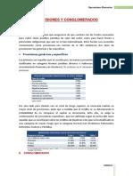 Provisiones y Congloerados