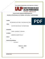 Festividad PDF