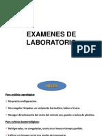 Coprología.pdf