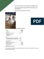 Chicken Farming (Broiler)
