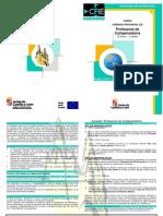Jornada Formación Profesores de Compensatoria CFIE Burgos  (2010-09-02)