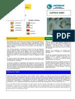 Lenguado.pdf