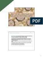 Tamaño y estructura de los Virus