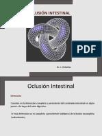 Oclusin Intestinal