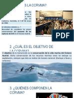 Ppt Convención Para La Conservación de Los Recursos Vivos